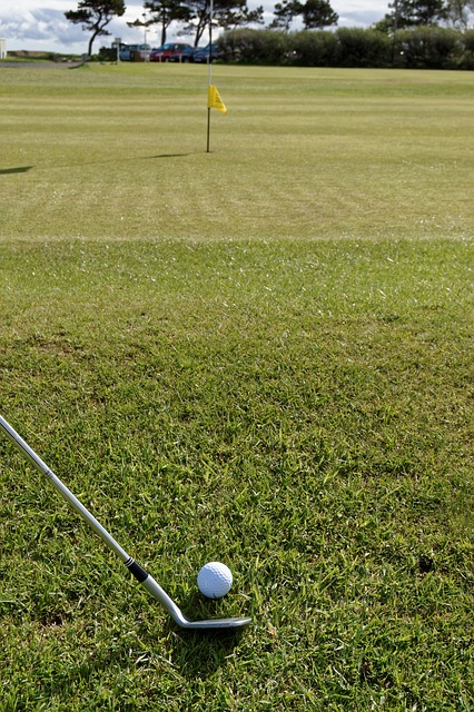 golf-881350_640